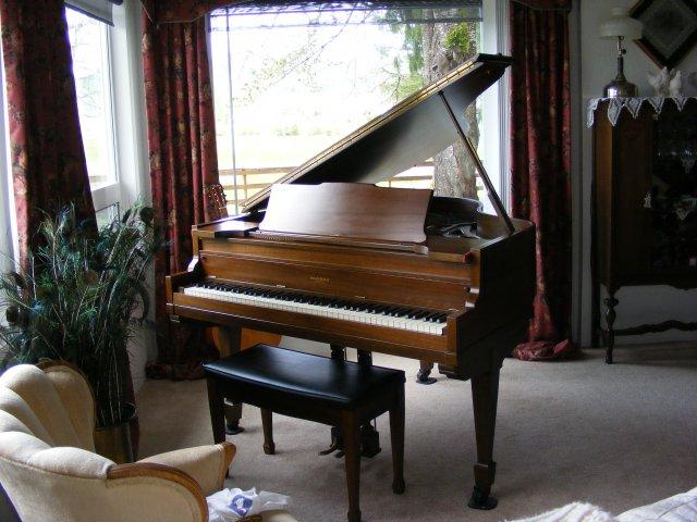 brambach baby grand piano serial number